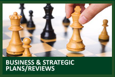 business and strategic plans and reviews