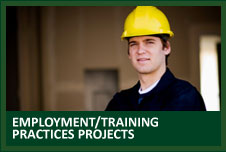 Labour market/workforce development projects Projects